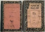 Elena Niculita Voronca - Studii in folclor 2 volume 1908