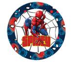 Cumpara ieftin Farfurie plata portelan 19cm Spidey Spiderman