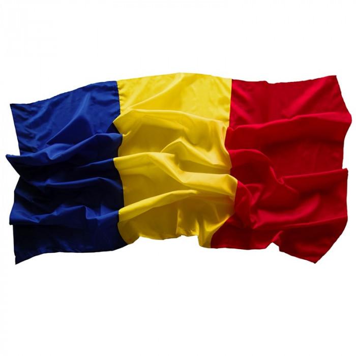 Steag Romania, 72 x 120 cm