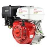 Motor pe benzina 13 CP Gardelina