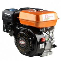 Motor pe benzina 6.5 CP Gardelina