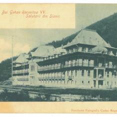 4766 - SLANIC MOLDOVA, Bacau, Litho, Romania - old postcard - unused