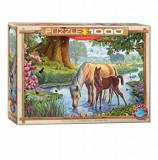Cumpara ieftin Puzzle Eurographics - Steve Crisp: The Fell Ponies, 1000 piese