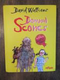 DOMNUL SCONCS - DAVID WALLIAMS