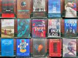 LOT carti bestseller, beletristica - autori contemporani,NOI