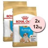 Cumpara ieftin ROYAL CANIN BULLDOG JUNIOR - 2 x 12 kg