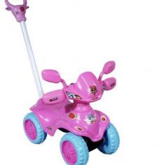 Masinuta Arti Fantasy roz