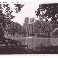 CRAIOVA-PARCUL BIBESCU-CARTE POSTALA ANII 40, Necirculata, Fotografie