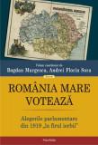"""România Mare votează. Alegerile parlamentare din 1919 """"la firul ierbii"""""""