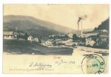 5046 - AZUGA, Prahova, Litho, Romania - old postcard - used - 1902
