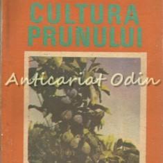 Cultura Prunului - Gheorghe Drobota, Mari-Ann Drobota