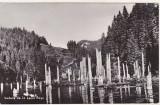 bnk cp Vedere de la Lacul Rosu - uzata