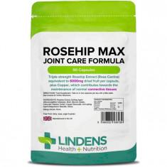 Lindens Lindens Macese Max 100 Capsule 6000mg Rose Supliment