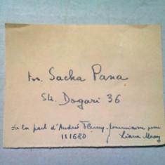 CARTE DE VIZITA SASA PANA