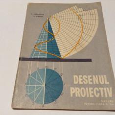DESENUL PROIECTIV MANUAL PENTRU CLASA A X A . HAIDUC , LEPADATU--RF14/4