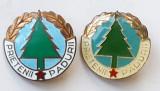 PRIETENII PADURII 2 insigne