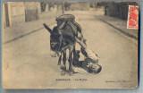 AX 46 CP VECHE INTERBELICA-UMORISTICA -CADEREA DE PE MAGAR, Franta, Circulata, Printata