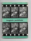 Ion Hobana - Imaginile posibilului
