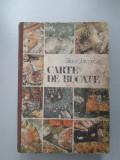 Carte de bucate - Silvia Jurcan, Alta editura, 1987, Silvia Jurcovan