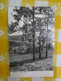 Vatra Dornei - Panorama - vedere circulata 1962