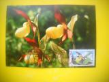 HOPCT 61520  MAXIMA PAPUCUL DOAMNEI/ CYPRIMEDIUM CALCEOLUS L -FLORA / FLORI, Necirculata, Printata
