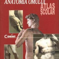 Anatomia omului. Atlas scolar/Florica Tibea