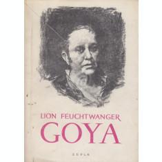 Goya sau drumul spinos al cunoasterii