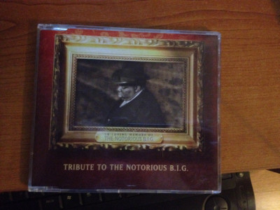 Puff Daddy & Faith Evans/112/The Lox - Tribute To The Notorious B.I.G._maxi cd foto