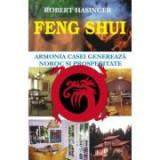 Feng shui - Robert Hasinger