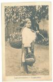 4694 - Sibiu, ETHNIC woman, Romania - old postcard - unused - 1917