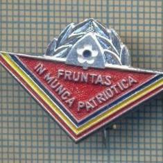 """Y 807 INSIGNA -PIONIERI -,,FRUNTAS IN MUNCA PATRIOTICA"""" - PENTRU COLECTIONARI"""