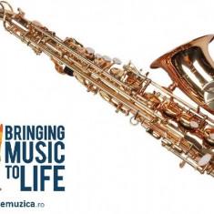 Saxofon Alto Sax Karl Glaser AURIU curbat NOU ALT Saxophone Germania
