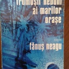 Frumosii nebuni ai marilor orase – Fanus Neagu