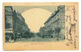2848 - BUCURESTI, Elisabeth Ave. Romania - old postcard - used - 1902, Circulata, Printata