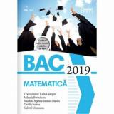 Bacalaureat 2019 - Matematica/Radu Gologan (coord.), Mihaela Berindeanu, Nicoleta Ionescu Mazilu, Ovidiu Sontea, Gabriel Vrinceanu
