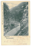 4015 - PETROSANI, Surduk Pass, Litho, Romania - old postcard - used - 1904