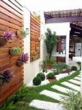Pergola pentru perete din lemn masiv, 200 x 250 cm, pentru exterior