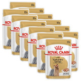 Cumpara ieftin ROYAL CANIN ADULT YORKSHIRE 12 x 85 g