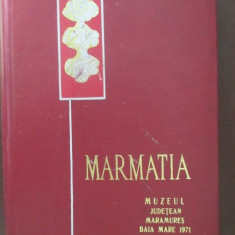 MARMATIA II Muzeul Judetean Maramures