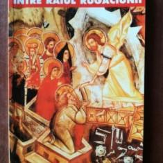 Intre raiul rugaciunii si iadul drogurilor-Mihaela Ion