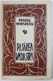 PASAREA VADASTRA de DRAGOS MORARESCU, BUC. 1980 EXEMPLAR NUMEROTAT * CU DEDICATIA AUTORULUI