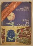 Viorica Mircea - Luna in oglinda apei