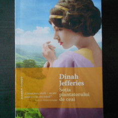 DINAH JEFFERIES - SOTIA PANTATORULUI DE CEAI