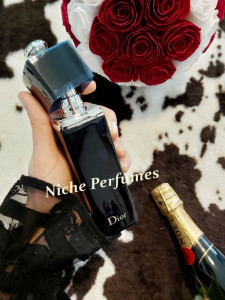 Parfum Original Christian Dior Addict