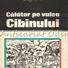 Calator Pe Valea Cibinului - Emil Bejan