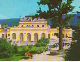CPIB 15185 - CARTE POSTALA - VATRA DORNEI