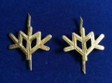 Insigne militare-Insigne România-Semne de armă-Vânători de Munte (culoare aurie)
