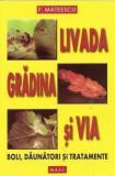 Livada, grădina și via