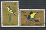 Fujeira Birds, used A.93