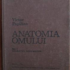 Anatomia omului (vol.1) - Aparatul locomotor  -  Victor Papilian